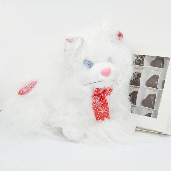 Gatto e Cioccolatini di San Valentino